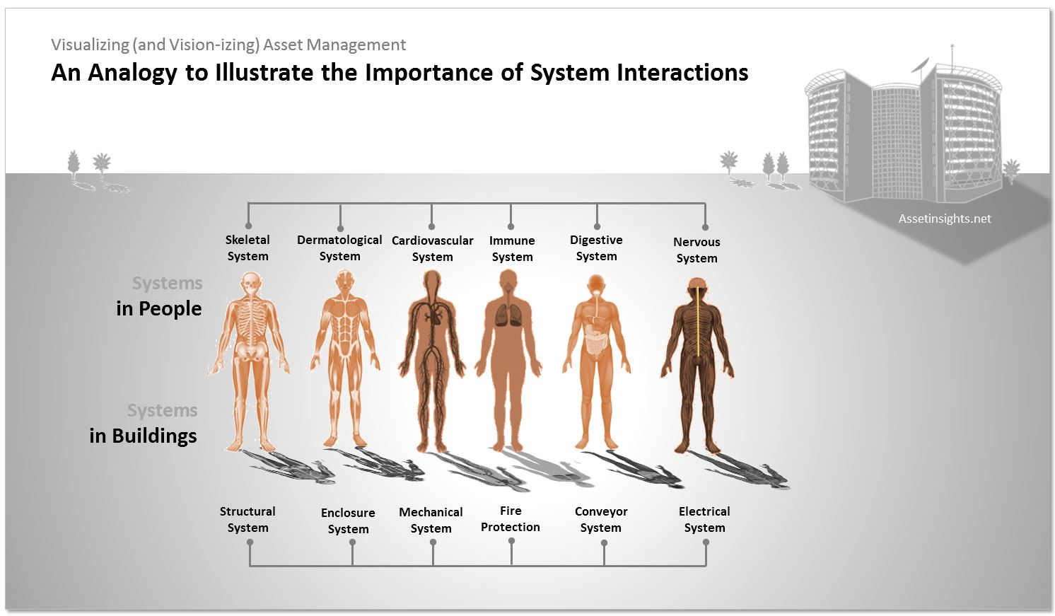 human body system interaction essay This portion of the lesson is for student/teacher interaction and and functions of the human body systems as they compare and contrast essay.
